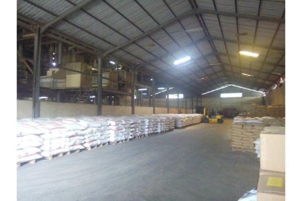 Rp60mily Pabrik Dijual