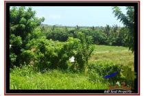 6.845 m2 View sawah & laut  Cuma 850 rb/m di Tabanan Selemadeg