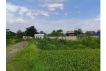 Di Jual atau disewa Tanah di Cikarang Cibarusa Bekasi- Jawa barat