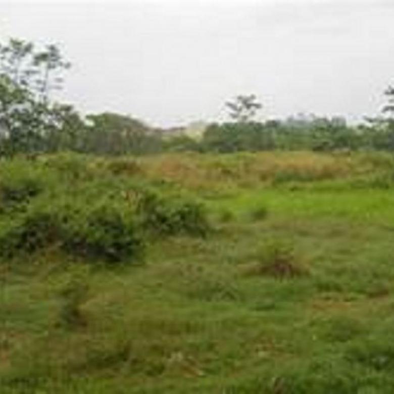 Manyar Jaya - Kavling Siap Bangun