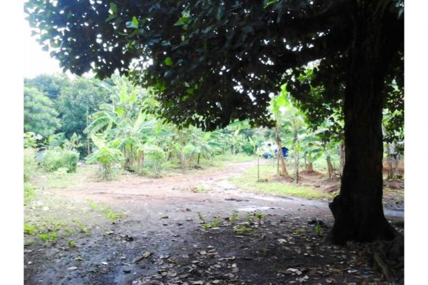 Tanah kavling nego genting di cengkong karawang 12400303