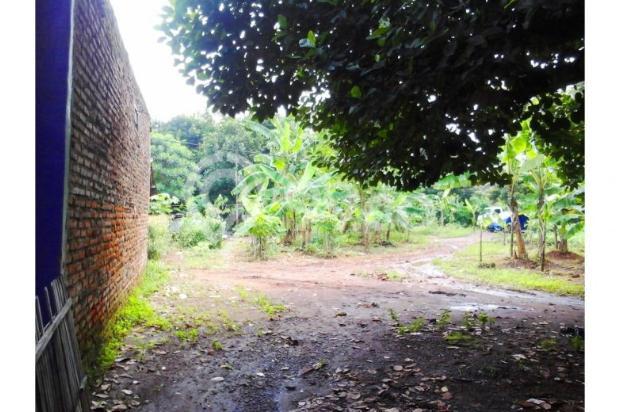 Tanah kavling nego genting di cengkong karawang 12400326