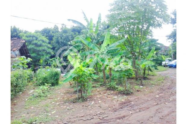 Tanah kavling nego genting di cengkong karawang 12400354