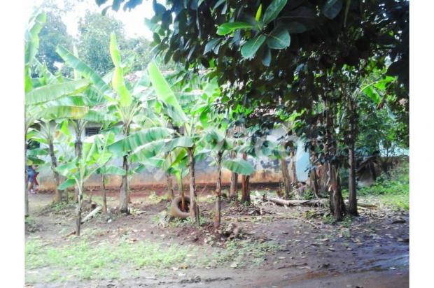 Tanah kavling nego genting di cengkong karawang 12400358