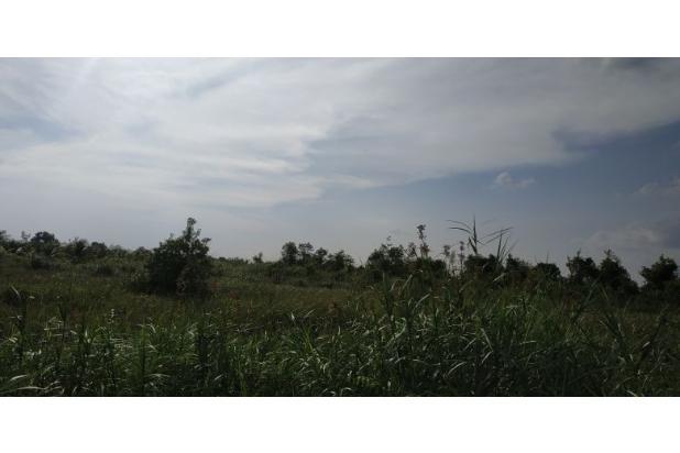 tanah 3.2 hektar murah
