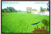 2,800 m2 with Rice field View in Sentral Ubud