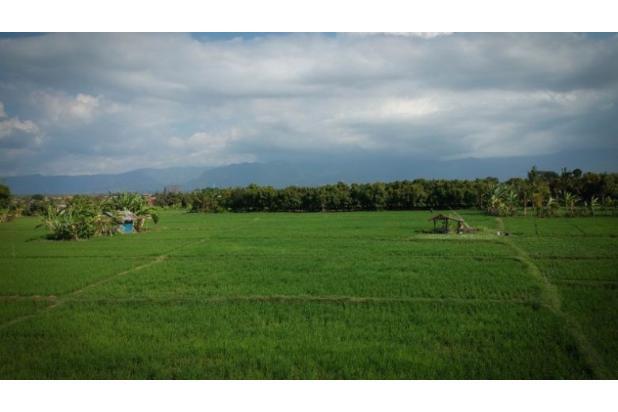 Rp148mily Tanah Dijual