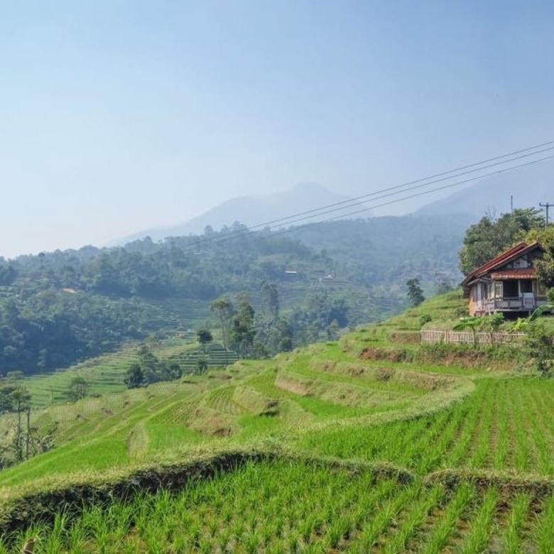Segera Miliki Tanah Luas di bandung selatan 142.000/mtr