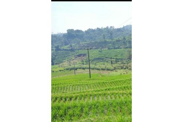 Rp1,42mily Tanah Dijual