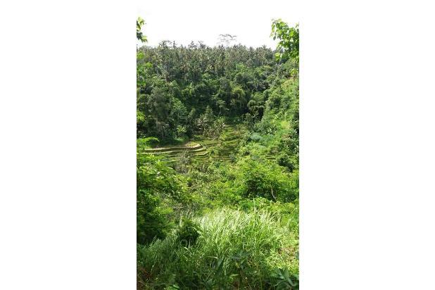 Rp6,1mily Tanah Dijual