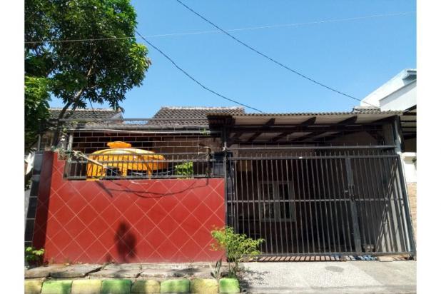 Pesona Mutiara Residence Rumah Cantik nan Asri 12468344