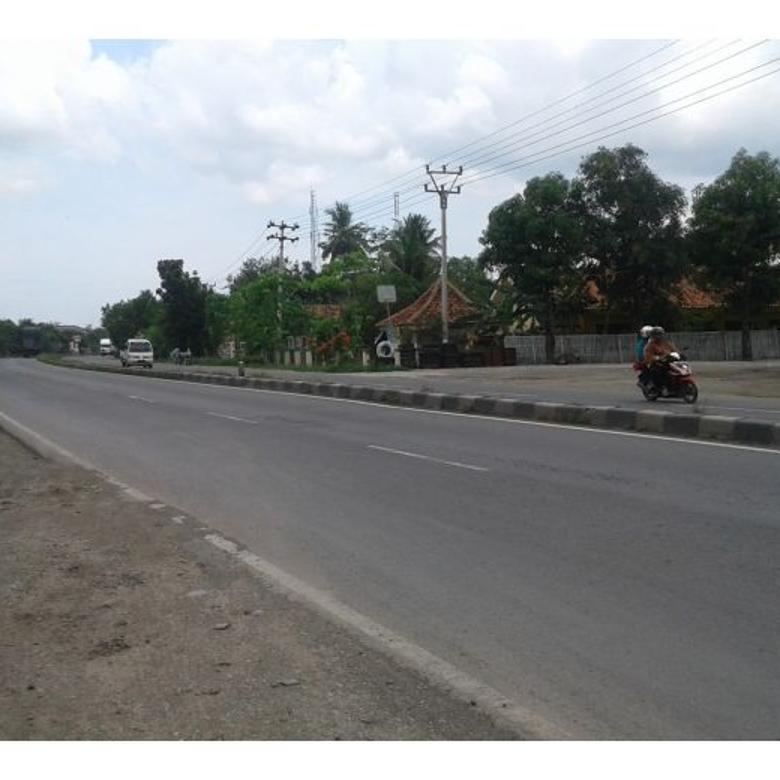 Tanah-Indramayu-1
