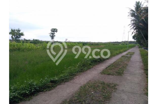 Site Tanah Tepi Jl. Provinsi, Murah: Hemmm, Segera Bungkus! 14419090