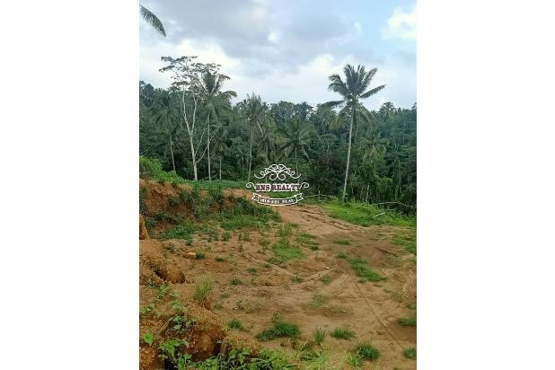 Rp178mily Tanah Dijual