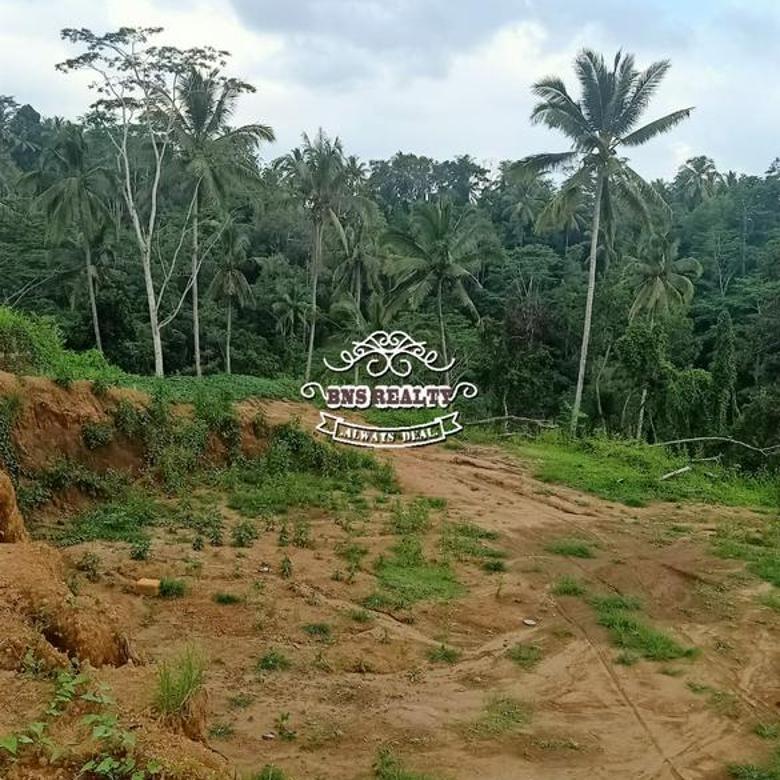 Tanah Jual Lokasi Payanga