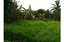 Tanah Krukut Cocok Untuk Townhouse