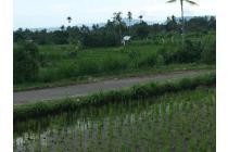 Tanah murah di Karangasem turun harga