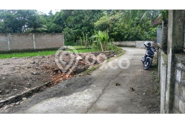 Tanah Dijual Bantul, Tanah Pekarangan Di Pendowoharjo 16845323