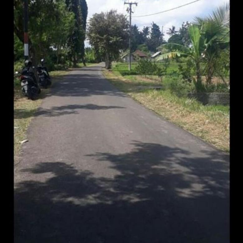 Tanah Bonus Guest House DI Munggu Dkt Ke Canggu Bali