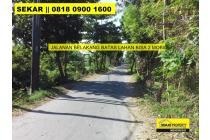 Tanah-Denpasar-7