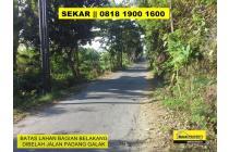 Tanah-Denpasar-9
