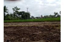 Tanah-Gianyar-7
