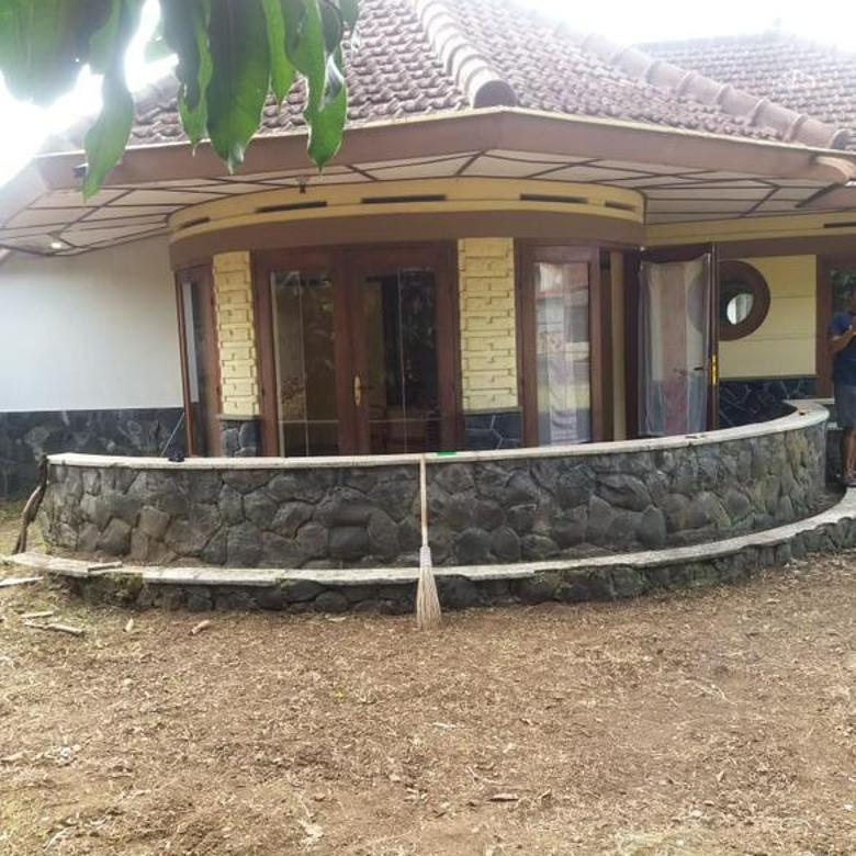 Rumah Antik Amp Asri Di Gatsu Sangat Unik Dan Cocok Di Huni