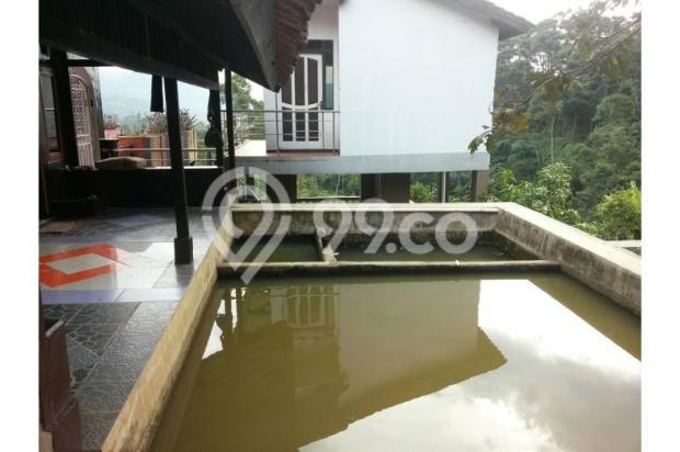 Dijual Villa Hanya 1,3M Tanah Luas di Lokasi Wisata Bandung Selatan 12470932