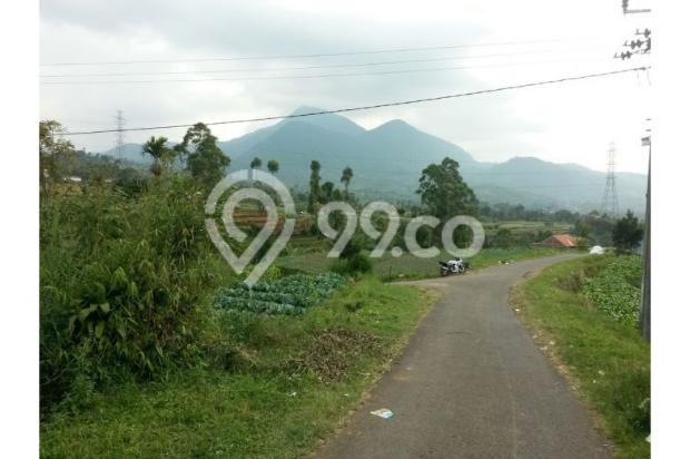 Dijual Villa Hanya 1,3M Tanah Luas di Lokasi Wisata Bandung Selatan 12470933