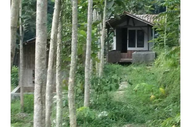 Dijual Villa Hanya 1,3M Tanah Luas di Lokasi Wisata Bandung Selatan 12470934