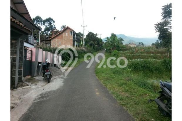 Dijual Villa Hanya 1,3M Tanah Luas di Lokasi Wisata Bandung Selatan 12470937