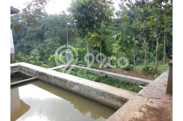 Dijual Villa Hanya 1,3M Tanah Luas di Lokasi Wisata Bandung Selatan 12470942