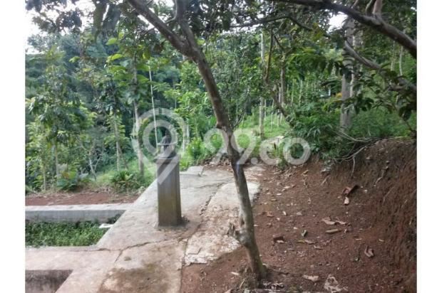 Dijual Villa Hanya 1,3M Tanah Luas di Lokasi Wisata Bandung Selatan 12470943