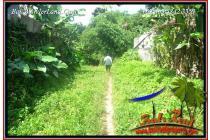 Langka, Murah 77 are View air terjun