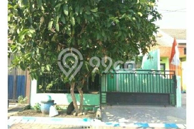 Griya Full Renovasi Kahuripan Nirwana 12875328