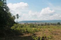 Tanah-Kupang-1