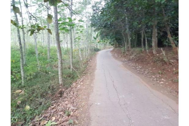 DiJual Tanah Kavling Murah Lokasi Strategis 13244289