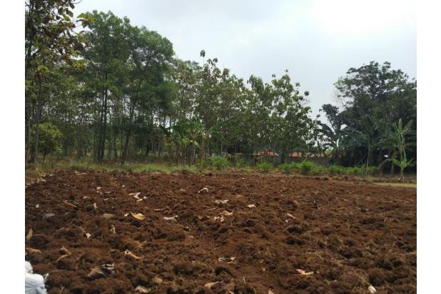 DiJual Tanah Kavling Murah Lokasi Strategis 13244307