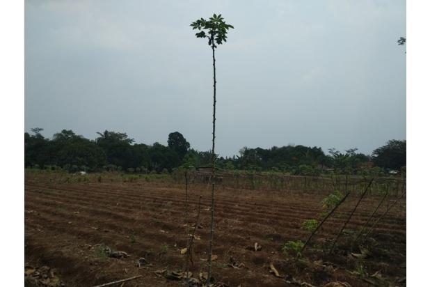 DiJual Tanah Kavling Murah Lokasi Strategis 13244308