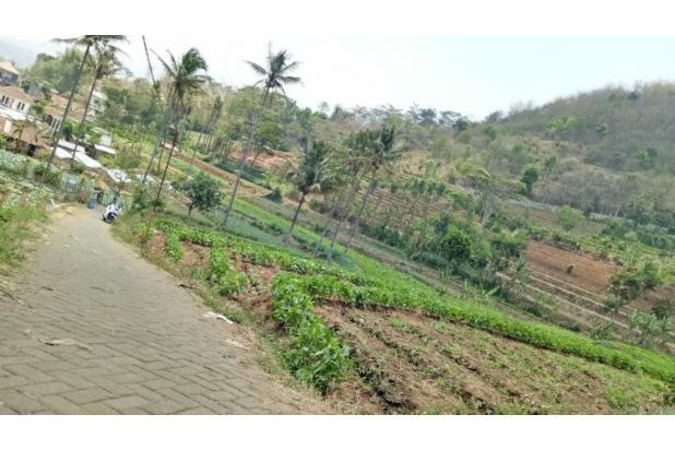 Rp3,48mily Tanah Dijual