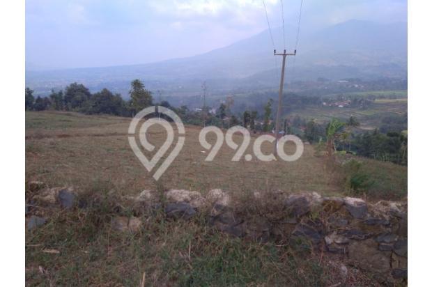 Tanah VIEW 360*,Lokasi TOP u/ VILLA,PERTANIAN,CLUSTER di Pangalengan Bdg 13189398
