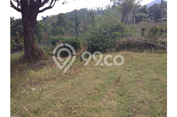 Tanah VIEW 360*,Lokasi TOP u/ VILLA,PERTANIAN,CLUSTER di Pangalengan Bdg 13189444