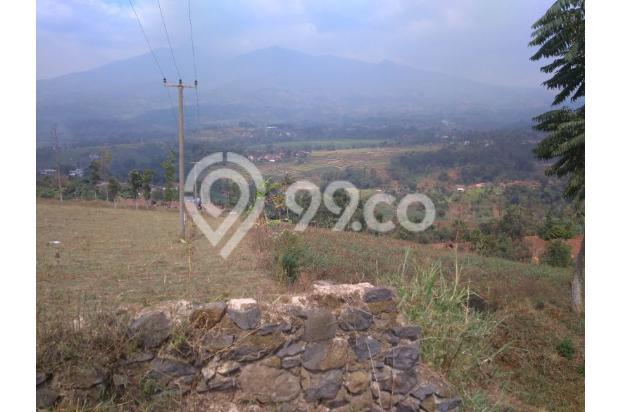 Tanah VIEW 360*,Lokasi TOP u/ VILLA,PERTANIAN,CLUSTER di Pangalengan Bdg 13189445