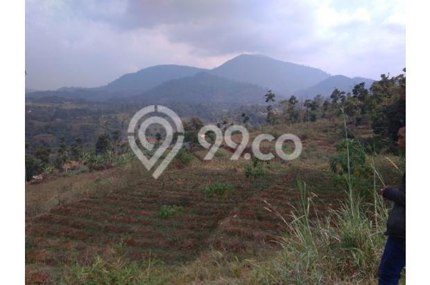 Tanah VIEW 360*,Lokasi TOP u/ VILLA,PERTANIAN,CLUSTER di Pangalengan Bdg 13189452