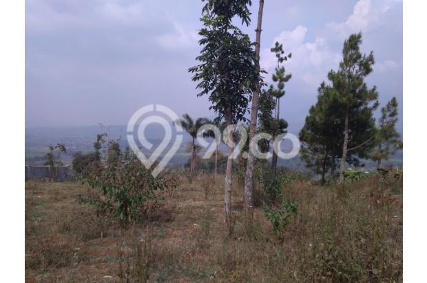 Tanah VIEW 360*,Lokasi TOP u/ VILLA,PERTANIAN,CLUSTER di Pangalengan Bdg 13189453