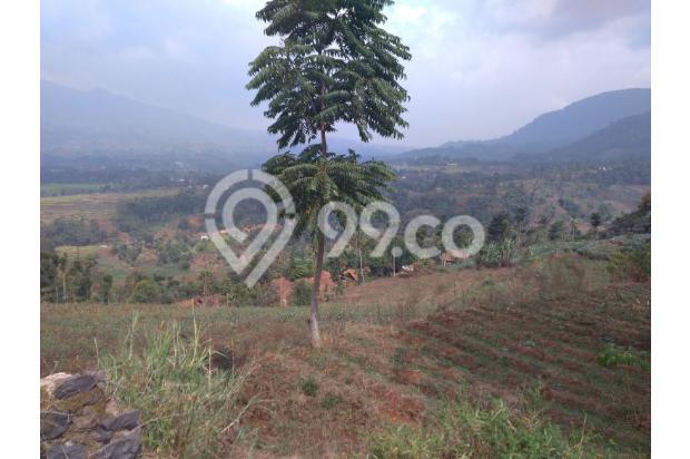 Tanah VIEW 360*,Lokasi TOP u/ VILLA,PERTANIAN,CLUSTER di Pangalengan Bdg 13189463