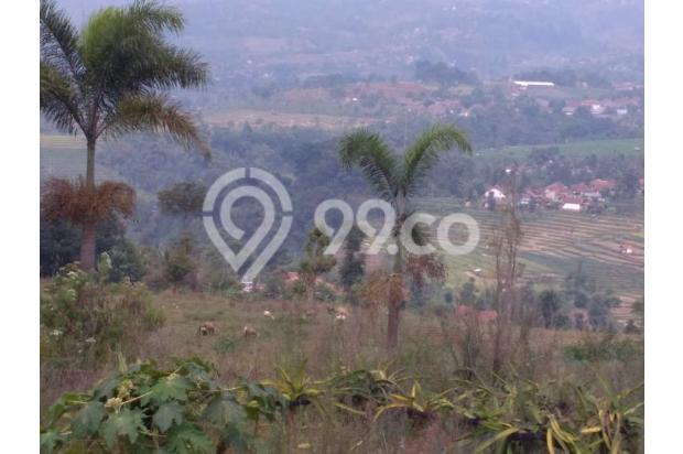 Tanah VIEW 360*,Lokasi TOP u/ VILLA,PERTANIAN,CLUSTER di Pangalengan Bdg 13189464