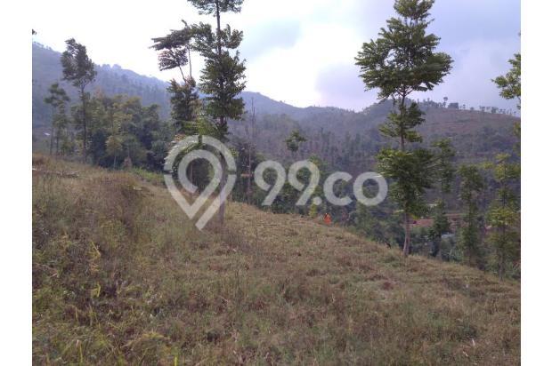 Tanah VIEW 360*,Lokasi TOP u/ VILLA,PERTANIAN,CLUSTER di Pangalengan Bdg 13189469