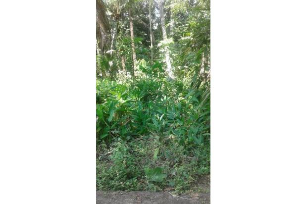 Tanah Murah Dijual, Cocok Untuk Investasi Daerah Bendungan, Kulon Progo 15829186