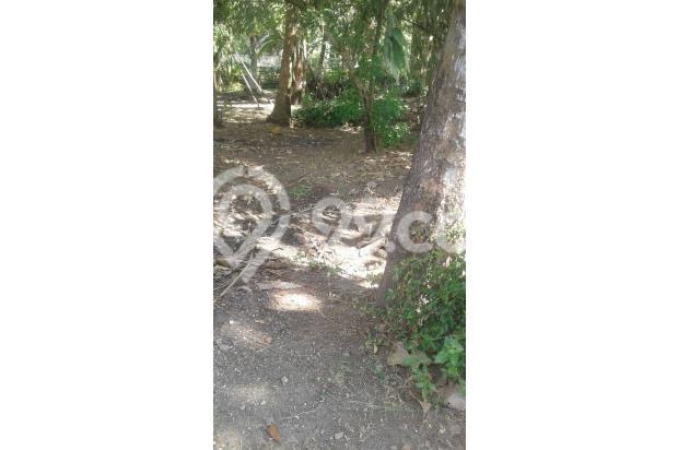 Tanah Murah Dijual, Cocok Untuk Investasi Daerah Bendungan, Kulon Progo 15829192